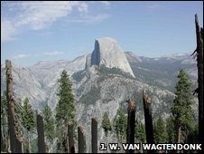 After effects of fire in Yosemite