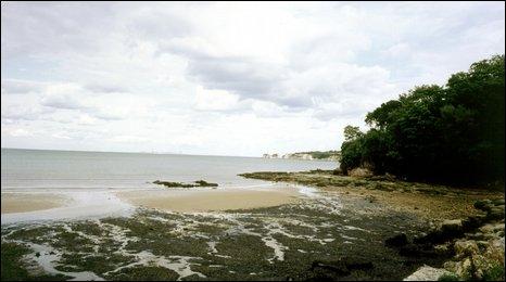 Studland Beach (BBC)