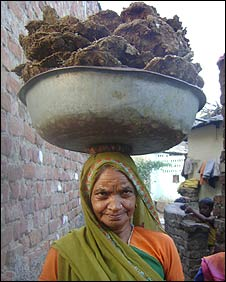Woman in Gujarat with cow dung