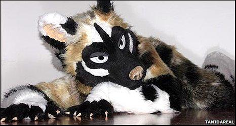 Transilvanian Wild Dog Daiquiri