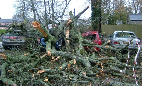 Cars hit by trees at Elfordleigh Hotel, near Plymouth