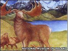 Giant deer (Megaloceros giganteus)