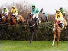 Racehourses