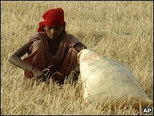 Woman working in a field in India.