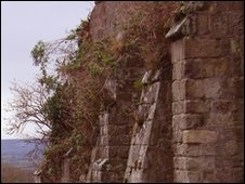 Vegetation growing from the wall prior to its removal