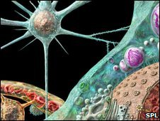 Artist's impression of prion protein