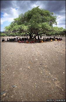 Meeting under tree