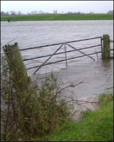 Farmland flooding