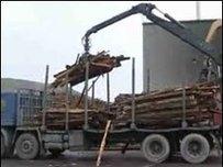Gweithfa biomas Western Woods