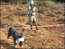 Lucky the MAT Mine Detection Dog. Photo Mines Awareness Trust