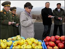 North Korean leader Kim Jong-il inspects apples in undated photo