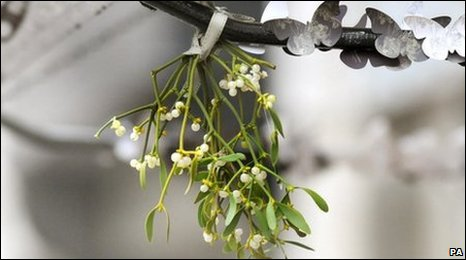 Mistletoe. Image: The Press Association