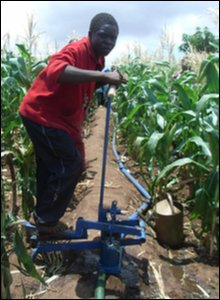 Malawi farmers using treadle pump