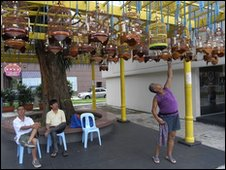 Wooden bird-cages hooked onto racks