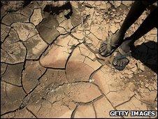 Dried river bed in Kenya (file image)