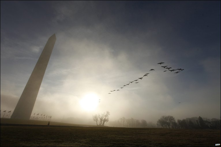A flock of geese flying near the Washington Monument