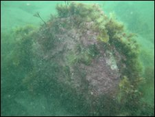 Possible submerged gravestone - Pictures courtesy of Rising Tide Project