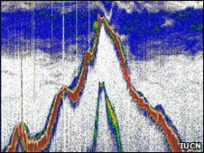 A seamount echogram showing the deep scattering layer.