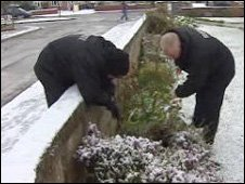 Police examine gardens near where the stabbing took place