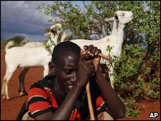 Kenyan pastoralist with his goats (Image: AP)