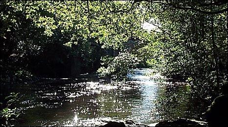 River Dart at Newbridge