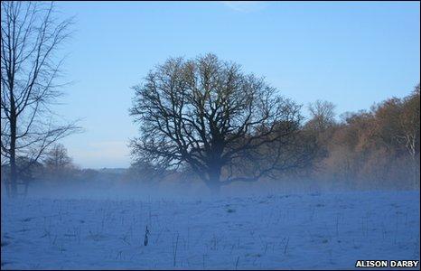 A snowy scene at Erddig