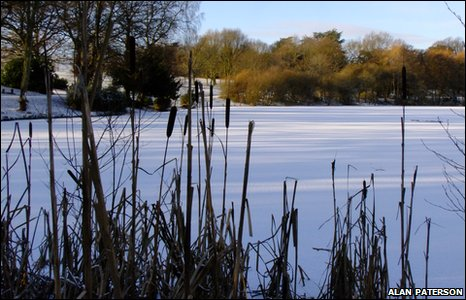 A winter view of the lake in Acton Park, Wrexham