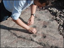 Fossil trackway (Per Ahlberg et al)