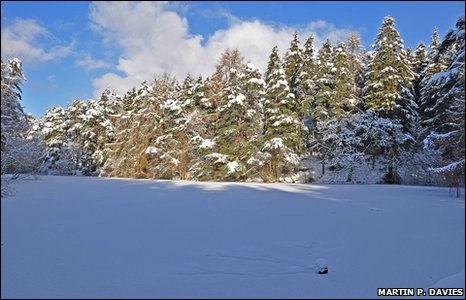 A frozen lake in Bod Petrual, Clocaenog, which is part of Hiraethog Forest near Ruthin