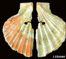 Pigment-coated ancient shell