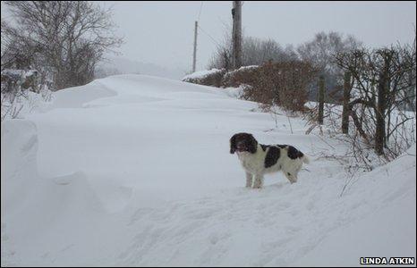 A country lane under drifting snow in Cyffylliog, near Ruthin