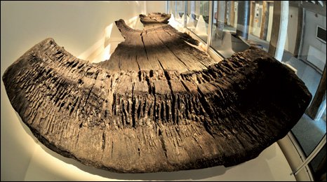 The 10 metre long log boat was preserved in a sugar syrup