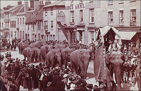 Parade of elephants along Crouch Street in the 1890s