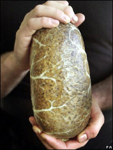 Haggis in ox intestine casing