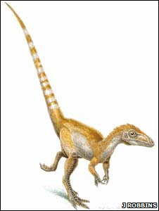 "Sinosauropteryx had a ""Mohican"" of ginger-coloured feathers and a stripy tail"