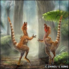 Reconstruction of Sinosauropteryx 