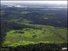 Amazon Rainforest (IPCC)