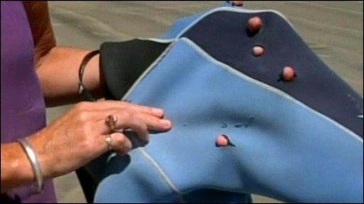 Holes in wet suit made by shark's bite