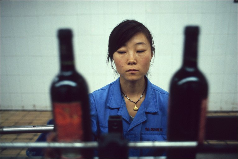 A worker in a winery. Photo: Ryan Pyle