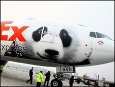"The FedEx plane carrying two giant pandas, and decorated with an image of a panda, arrives at the airport in Chengdu, southwest China""s Sichuan province, on February 5, 2010"