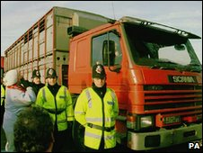 Police guard a lorry with live animals for export