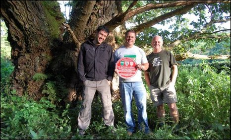 Countryfile presenter James Wong, with Mark Williams and ancient tree hunter Rob McBride, stood by the Great Oak of the Gate of the Dead