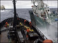 A Japanese whaling ship collides with a Sea Shepherd ship in the Antarctic (6 Feb 2010)