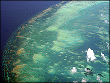 Aerial view of the Great Barrier Reef (Image: BBC)