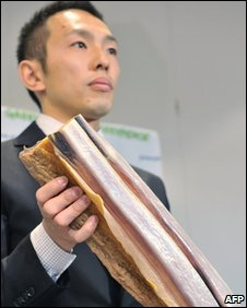Junichi Sato holding a slab of whale meat (15 May 2008)