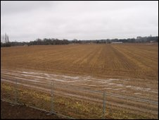 Beet field Saham Toney in Norfolk