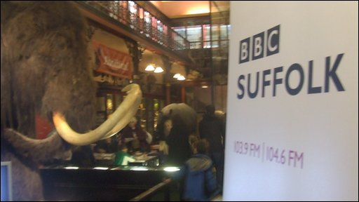 Woolly mammoth and BBC Suffolk banner at Ipswich Museum