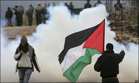 Bilin protest February 2010