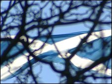 saltire blowing in the wind