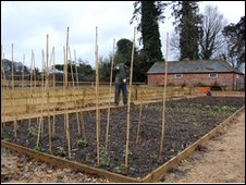 The old kitchen garden at Kingston Lacy